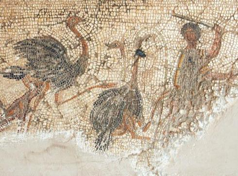 Ancient Ostrich Worship